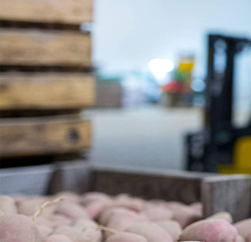 aardappelkisten